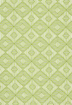 Amazing Maze  Palm