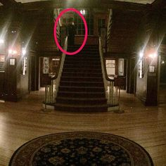 "Stanley Hotel, Estes Park, CO - ""When I took it, I didn't notice anything."" - Henry Yau, director of public relations at the Children's Museum of Huston said. One paranormal investigator enlarged the photo and stated that he saw not one, but two entities on the stairs. The Stanley is believed to be inundated with ghosts and was the inspiration for Stephen King's ""The Shining"". It has been visited many times by paranormal investigators, including SyFy's ""Ghost Hunters""."