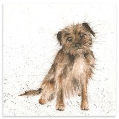 Border terrier greeting card by artist Hannah Dale at Wrendale Designs Wrendale Designs, Cute Little Dogs, Black And White Painting, Border Terrier, Brown Dog, Dog Hacks, Vintage Artwork, Watercolor Animals, Dog Portraits