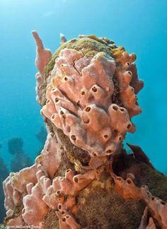 Jason deCaires Taylor Vicissitudes  26 life-size figures. Depth 5m. Grenada, West Indies.