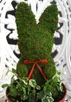 トピアリーモスウサギ(4号)
