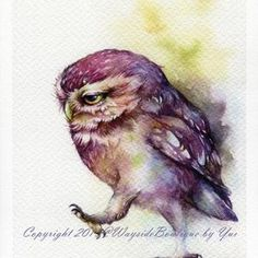 PRINT Watercolor painting 7.5 x 11   Etsy Owl Watercolor, Watercolor Animals, Watercolor Paintings, Owl Art, Bird Art, Owl Pictures, Beautiful Owl, Artwork Prints, Painting & Drawing
