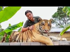 As we explore the Myrtle Beach Safari preserve and introduce you al. Stay Wild, Myrtle, Big And Beautiful, How To Introduce Yourself, Safari, Frame Download, Pets, Beach, Animals