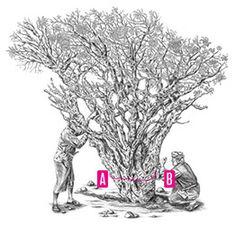 The Frankincense Tree