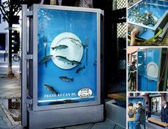 An aquarium to sell fresh fish