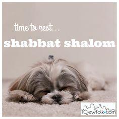 We'll see you next week Sabbath Day Holy, Happy Sabbath, Bon Weekend, Shabbat Shalom Images, Good Shabbos, Candle Lighting, Blessing, Israel, Christianity