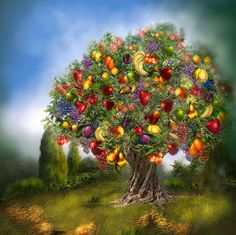 Wishing you A world Filled with Abundance. Tree Of Abundance prose by Carol Cavalaris This painting of a fanciful tree growing with an abundance of all kinds of different fruit is from the 'Fantasy' collection of art by Carol Cavalaris. Programme D'art, Creation Photo, Abraham Hicks Quotes, Colorful Fruit, Photoshop, Bright Future, Growing Tree, Fruit Trees, Tree Of Life