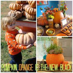 Pumpkin Orange is th