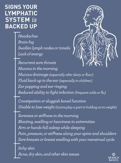 Branch Basics | Signs Your Lymphatic System is Backed Up & How to Activate Your Lymph for a Proper Detox!