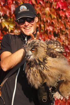 """Die Bedeutung der Vermehrung von Greifvögeln in Menschenhand wurde sogar von der """"Internationalen Union für den Schutz der Natur und der natürlichen Ressourcen"""" (IUCN) als Artenschutzmaßnahme anerkannt. Die Falkner auf der Adlerarena Burg Landskron sind Teil dieses Netzwerks und tragen so zur Arterhaltung bei.  Am Bild: Falkner mit Eule. #eulen #owl #animals #tiere #falkner #artenschutz #kärnten #österreich #carinthia #austria Owl, Animals, Wildlife Conservation, Nature, Pictures, Animales, Animaux, Owls, Animal"""