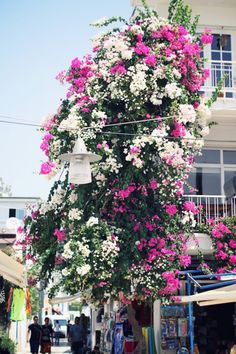 Bodrum,Turkey #travelcompanion