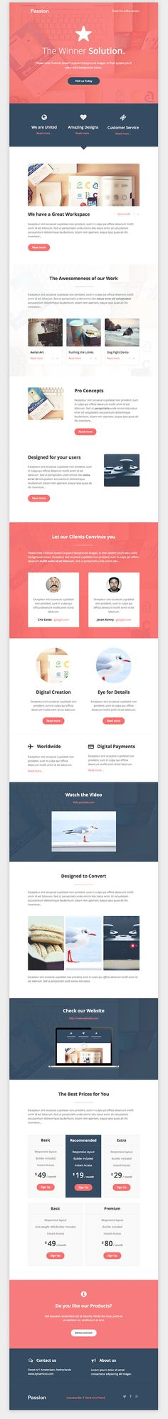 Clean Business Email Template
