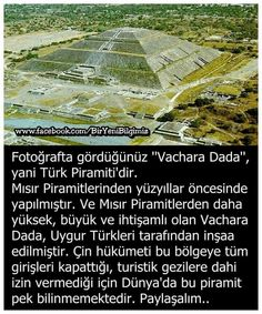 Neşe'nin gözdeleri Real Facts, Fun Facts, Turkey History, Turkish People, Okuda, Historical Pictures, Did You Know, Karma, How To Find Out