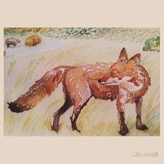 Fox on farm by Liz H Lovell on Redbubble.com/people/LizLovell #kidsclothes #adultsclothes #interiordesignideas #interior #interiordesign #duvets #cushions