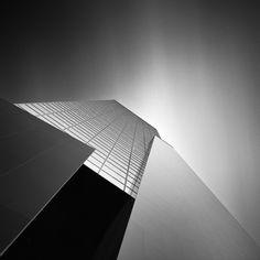 Shape of Light 2011