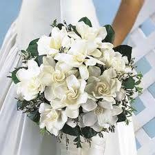 bouquet gardenie