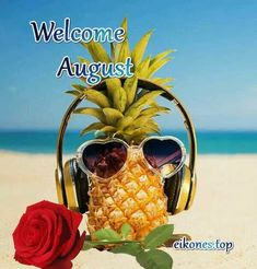 Welcome August, August Images, Months In A Year, Scenery, Magic, Signs, Top, Landscape, Shop Signs