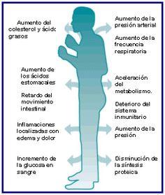 fatiga_cronica (1)