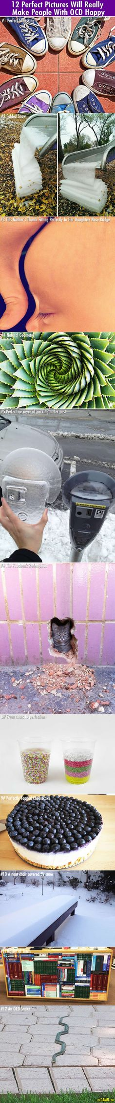 Your OCD will be really happy after seeing those 12 perfect pictures. |LOL, Damn! Funny and Awesome pictures.