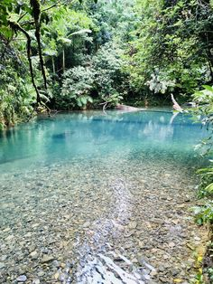 Swimming Holes, Man Swimming, Oh The Places You'll Go, Places To Visit, Atherton Tablelands, Holiday Places, Best Kept Secret, Summer Dream, Free Things To Do