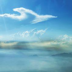 """""""Cloud bird #view #piloteyes #cloudporn #clouds #flightdeckview #flightlevel #aviapics #aeroflot #myaeroflot #cockpitview"""""""