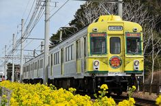 """Nanohana"" train of Toyohashi railway by wamu8, via Flickr"