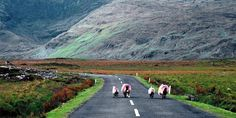 Road Trip #Irlande : Bilan, coups de cœurs et déceptions http://www.planete3w.fr/coups-de-coeurs-et-deceptions-bilan-road-trip-irlande/… … #roadtrip