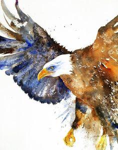 Watercolor Bird, Watercolor Animals, Watercolor Painting Techniques, Watercolor Paintings, Watercolors, Eagle Painting, Eagle Art, Bird Artwork, Wildlife Art