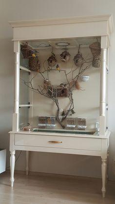 My indoor aviary