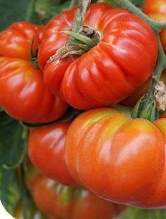 Calzone, Vegetables, Vegetable Recipes, Veggies