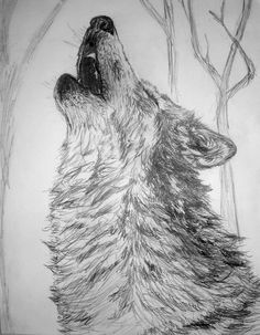 Howl by Kelly Wood (Pencil)