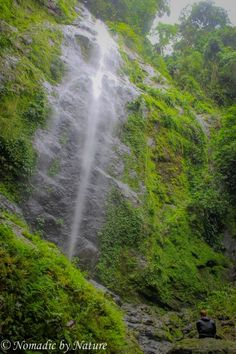 Borneo's Danum Valley: Sabah's Sanctuary Borneo, Exotic, Travel Photography, Waterfalls, World, Nature, Fairy, Outdoor, Outdoors