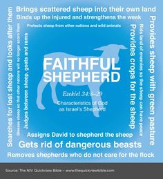 The Quick View Bible » Faithful Shephard