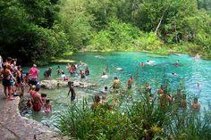 Ichetucknee Springs State Park near Gainesville  Love to float down the river!
