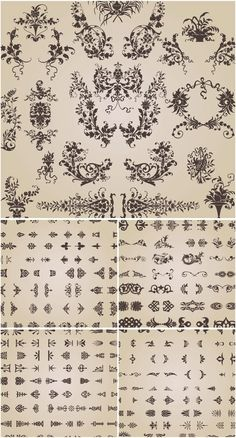 Ornamental decoration elements vector