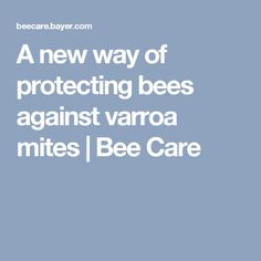 A new way of protecting bees against varroa mites | Bee Care