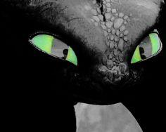 Toothless's cute big eyes ^.^ ♡