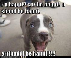 funny dog pictures - I Has A Hotdog: Erriboddi be happi!