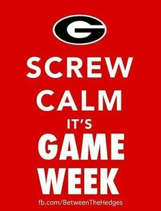 Georgia Bulldawgs! Me on game day....everyone shut up while I watch this play!!!!! ;)
