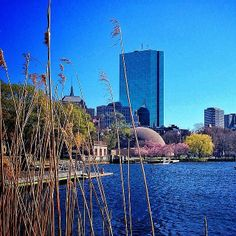 Beautiful shot of the Charles River Esplanade! Photo taken by @bjzinc. www.instagram.com/visitboston #Boston