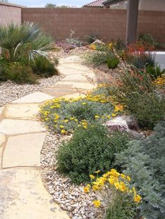Desert Landscape – we want to landscape our yards, especially our back yard. And we want a brick or block wall. Garden Garden Project Idea Project Lan… - All For Garden Landscaping With Rocks, Landscaping Plants, Front Yard Landscaping, Landscaping Ideas, Walkway Ideas, Inexpensive Landscaping, Outdoor Landscaping, Backyard Walkway, Desert Backyard