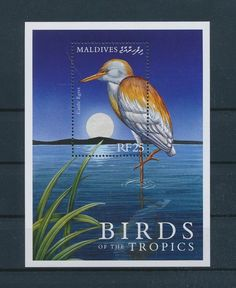 LE96209 Maldives  cattle egret birds good sheet MNH
