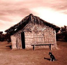 O VELHO JUZA DA GAMELEIRA: o velho sertão na bandas da gameleira