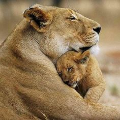 El abrazo de una madre hace que el mundo se pare, que todos los problemas dejen de existir...