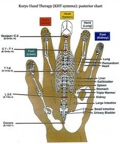 Korean Hand Reflex Therapy is based on the 12 Major Meridians of the human frame which have been reduced into a micro system superimposed onto the two hands. Description from reflexologyinstitute.com. I searched for this on bing.com/images
