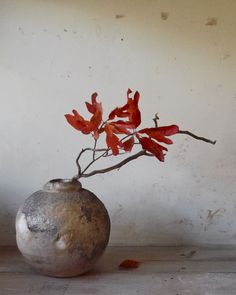 Mitch Iburg - Ember Buried Vessel - Wood Fired Native White Clay - (c) 2012 - www.mitchiburg.com