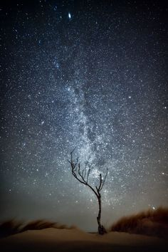 thk: Milky way over western Lithuania
