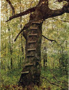 Tree Lader - Jamie W