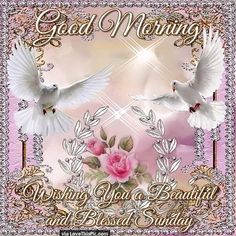 Good Morning Wishing You A Beautiful And Blessed Sunday good morning sunday sunday quotes good morning quotes happy sunday sunday quote happy sunday quotes good morning sunday beautiful sunday quotes sunday quotes for friends and family Happy Saturday Morning, Sunday Morning Quotes, Happy Sunday Everyone, Good Morning Gif, Good Morning Picture, Good Morning Wishes, Morning Morning, Night Quotes, Blessed Sunday Quotes
