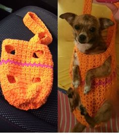 Crocheted forward facing dog sling by Bennie.